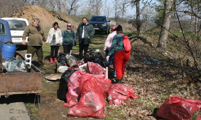 More than 250 bags of garbage were collected by volunteers from Strandzha Park